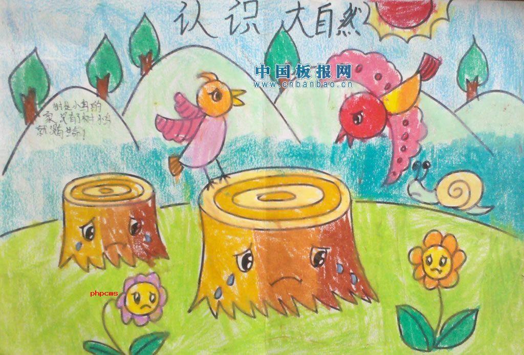 大自然的资料【手抄报】白鳍豚,野象,熊猫,东北虎等珍贵野生动物分布