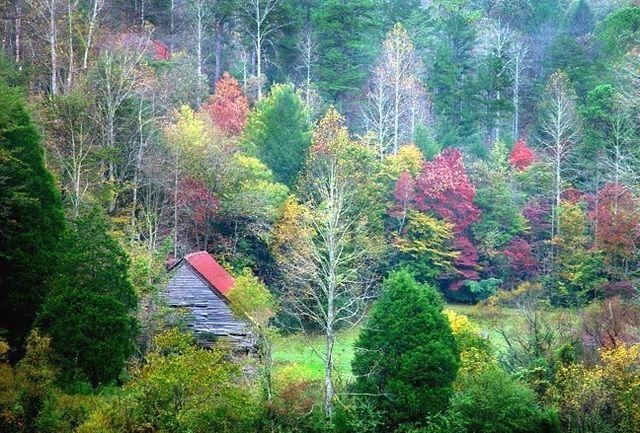 行人临发又开封描写秋天的诗:《山居秋暝》【唐】王维空山新雨后,天气