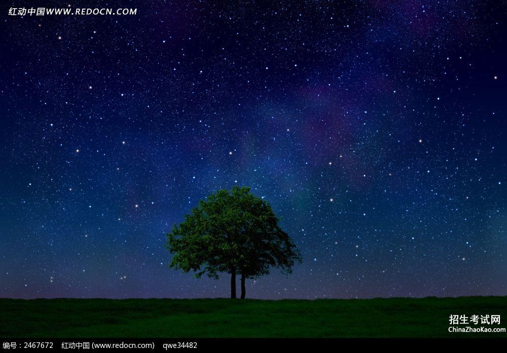 描写夜晚安静的句子