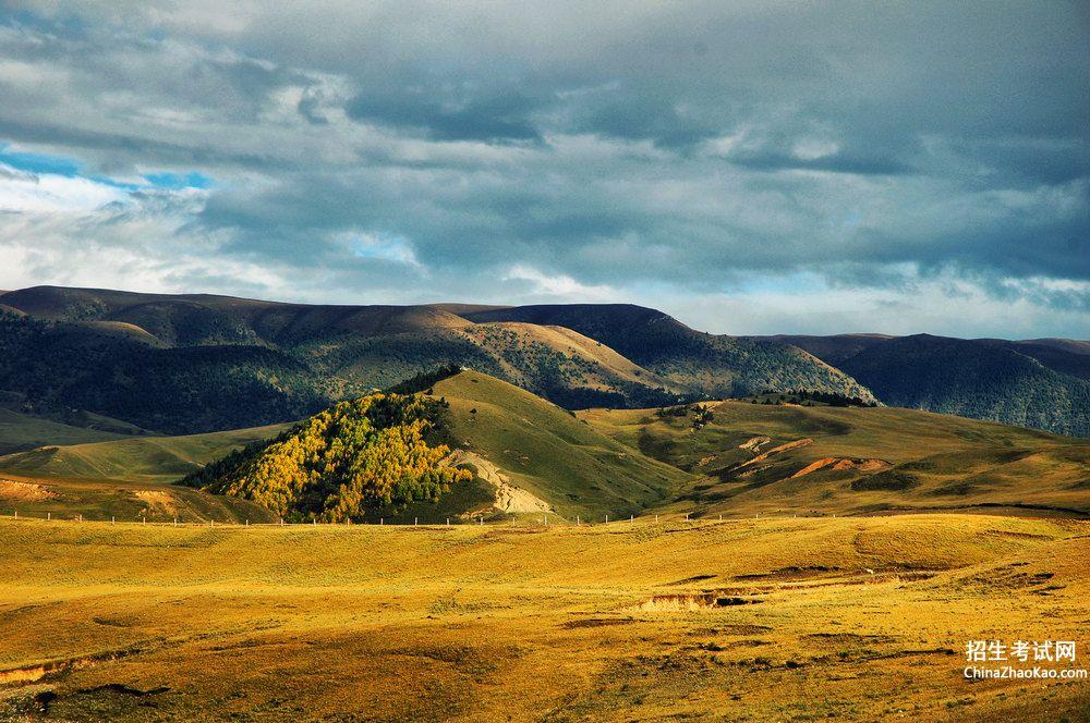 绿茸茸的意思_草原上的风景像什么。