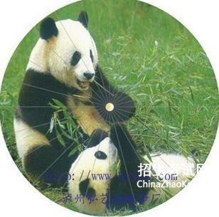 大熊猫为什么是国宝_能猫为什么是国宝