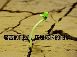 {事业励志的句子}