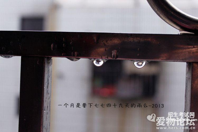 【下雨心情的句子】
