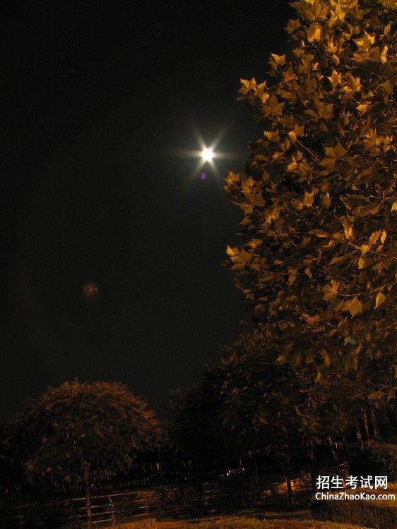 夜泊水村中与夜阑