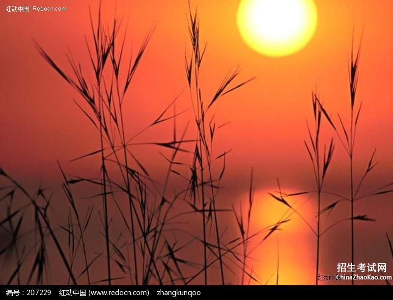 【描写傍晚夕阳的余晖的句子】