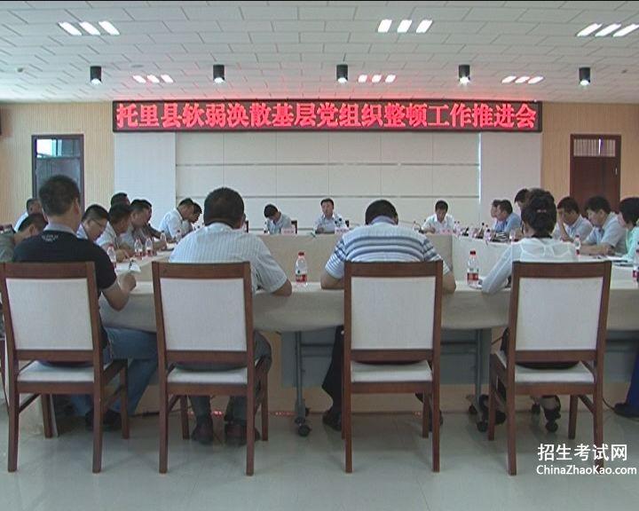 基层党组织基础工作集中整治情况报告