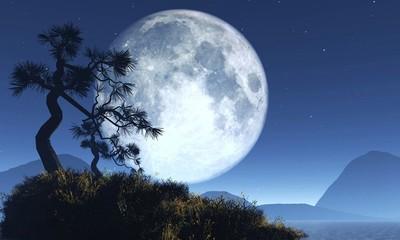 东边升起月亮教案设计