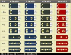 部队军衔等级排名肩章图片图片