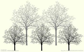 关于树的文章5篇