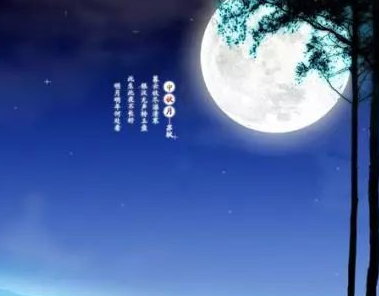 赏月作文500字_关于赏月的作文