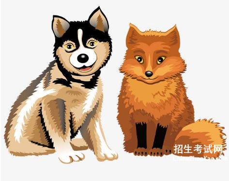 狼和狐狸的故事读后感|狼和狐狸的故事