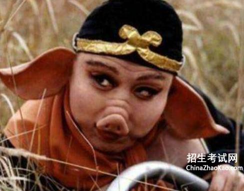 【猪八戒的故事情节】猪八戒的故事
