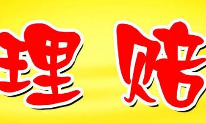 【保险理赔申请书范文】保险理赔工作总结范文