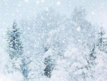 【有关雪的作文题目】有关雪的作文