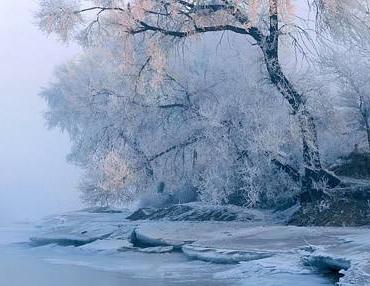 有关冬�斓淖魑奶饽縚有关冬�斓淖魑�