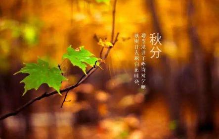秋分是什么意思|秋分如何养生?
