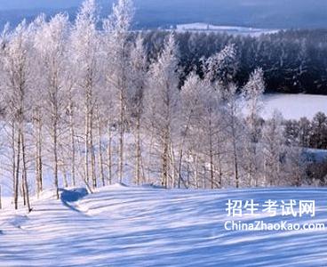 【写冬天的文章】关于冬天的文章大全