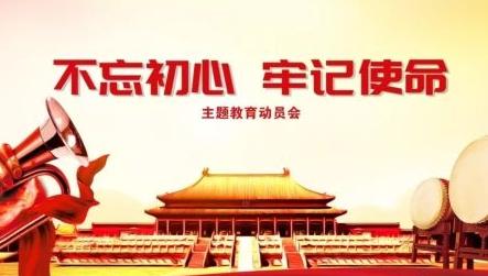 """2019年""""不忘初心、牢记使命""""专题民主生活会情况报告模板"""