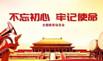 2019不忘初心牢记使命problem清单及整改措施报告